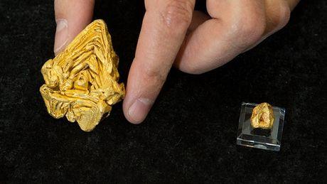 le-monocristal-d-or-pese-un-plus-de-200-grammes-et-vaudrait-plus-d-un-million-d-euros_65285_w460